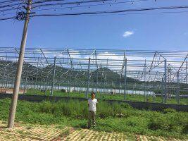 北京1.2万平阳光板温室工程,工程案例