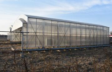 徐水温室大棚,工程案例