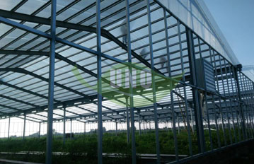 博野8000平蜂窝板蔬菜基地