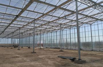 天津客户温室大棚,工程案例