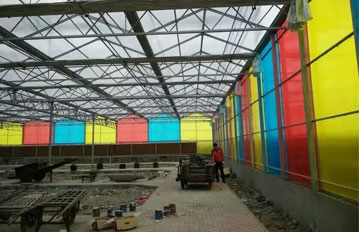 印度客户温室工程