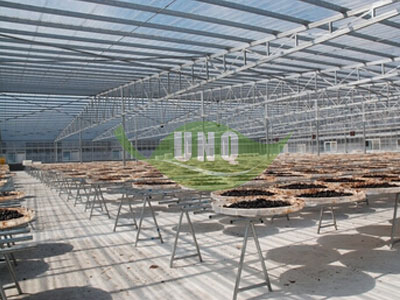 阳光板温室大棚温湿设备设施调控